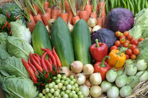 Estudo israelense revelou benefícios de fazer uma dieta mediterrânea verde